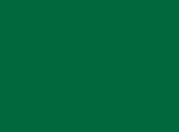 Купить -  Бумажный 1,35х 11,0м - Зеленый(Foto Green) 16252