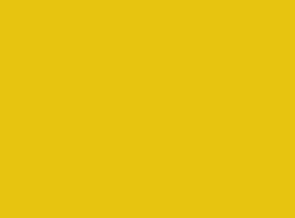Купить -  Бумажный фон  BD 2,72х11,0 м - Желтый(Marigold) 169BDCW