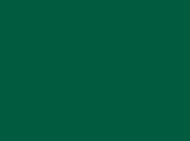 Купить -  Бумажный фон  BD 2,72х11,0 м - Зеленный(JADE) 137BDCW