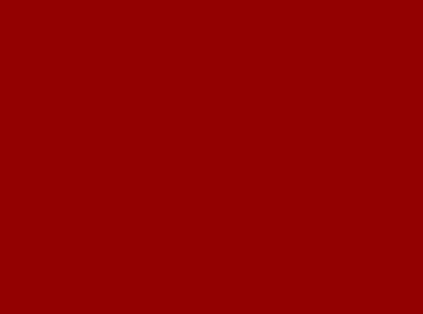 Купить -  Бумажный фон BD 2,72х11,0м - Красный(TERRACOTTA ) 139BDCW