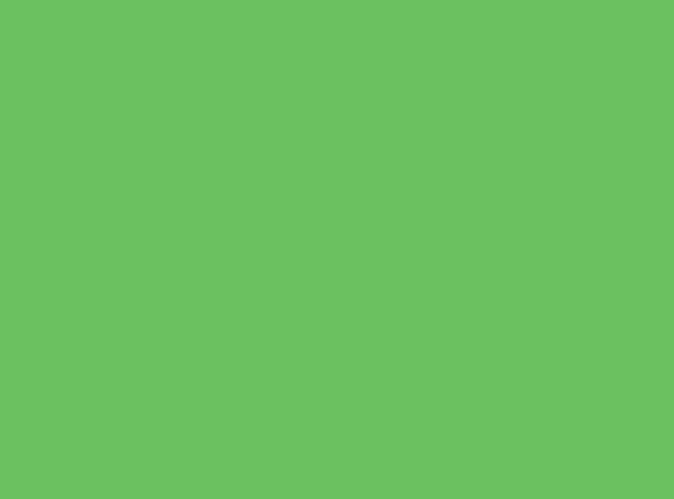 Купить -  Бумажный фон BD 2,72х11,0м - Салатовый(VERY GREEN) 132BDCW