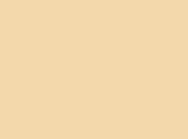 Купить -  Бумажный фон BD 2,72х11,0м - Светло-коричневый(PONGE) 121BDCW