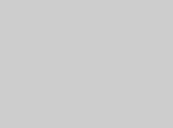 Купить -  Бумажный фон BD 2,72х11,0м - Серый(PLAZA GRAY) 119BDCW