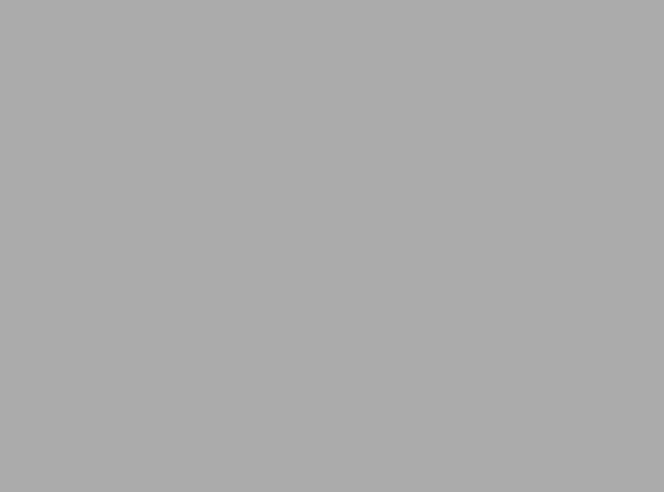 Купить -  Бумажный фон BD 2,72х11,0м - Серый(Stone GRAY) 170BDCW