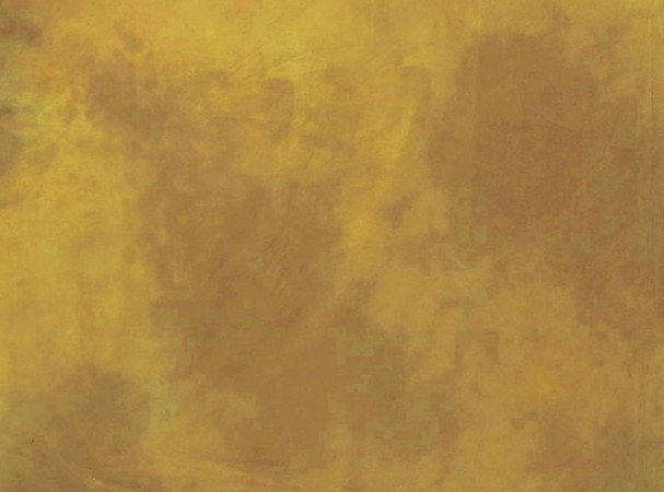 Купить -  LASTOLITE Фон тканевый Virginia 3x7m  (7843) (63804)