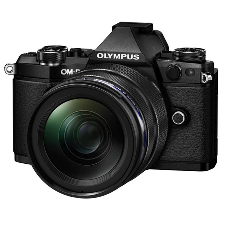 Купить - Olympus Olympus E-M5 mark II 12-40 PRO Kit + HLD-8 + BLN-1 black/black (V207041BE010)
