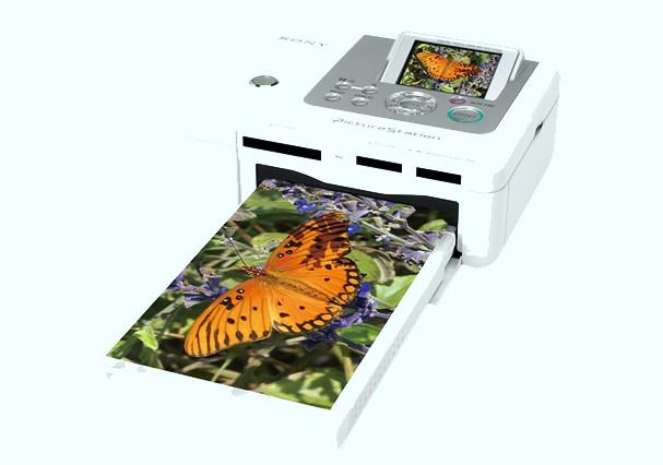 Купить -  Принтер Sony DPP-FP70 White