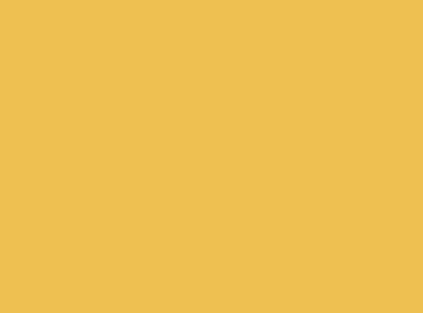 Купить -  Бумажный фон BD 1,35х11,0м - Желтый(Sunflower) 13852