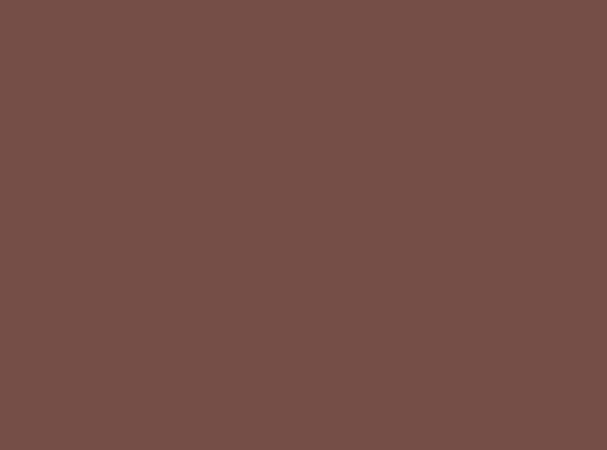 Купить -  Бумажный фон BD 1,35х11,0м - Коричневый(Hickory) 11352