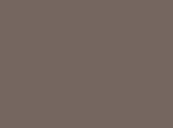 Купить -  Бумажный фон BD 1,35х11,0м - Серый(Dove Gray) 10952
