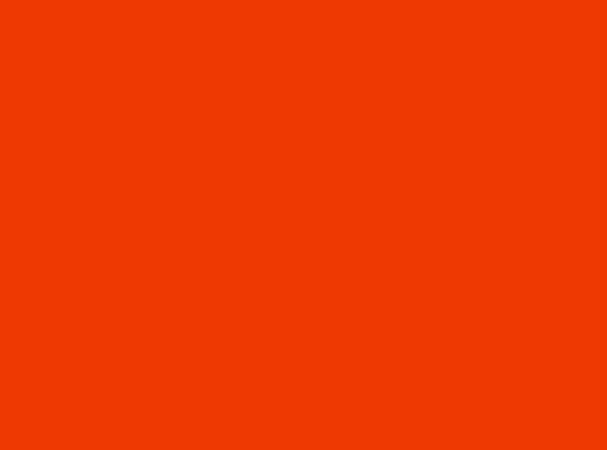 Купить -  Бумажный фон BD 2,72х11,0м - Морковный(TANGERINE) 152BDCW