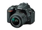 Фото - Nikon Nikon D5500 + объектив 18-55mm f/3.5-5.6G VR II (Kit)