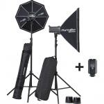 Фото -  Комплект студийного света Elinchrom D-Lite RX 4 (20839)