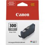 Фото - Canon Canon PFI-300 GY (4200C001AA)